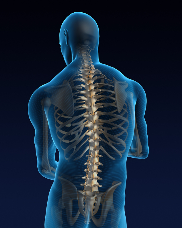 Human back with a visible pain